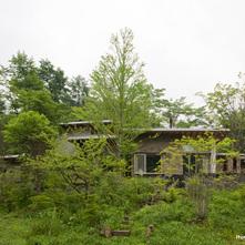 森の中の森の家
